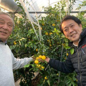 湘南ゴールド生産者 松本さんと早野バイヤー