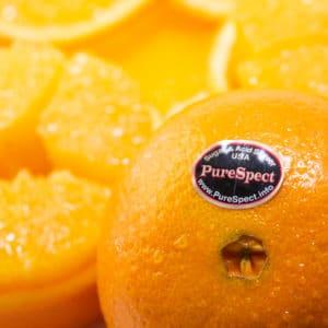 高糖度ピュアスペクトネーブルオレンジ