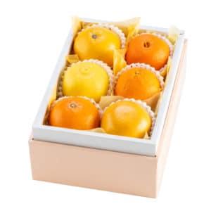 柑橘バラエティB