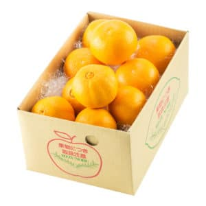 柑橘バラエティE