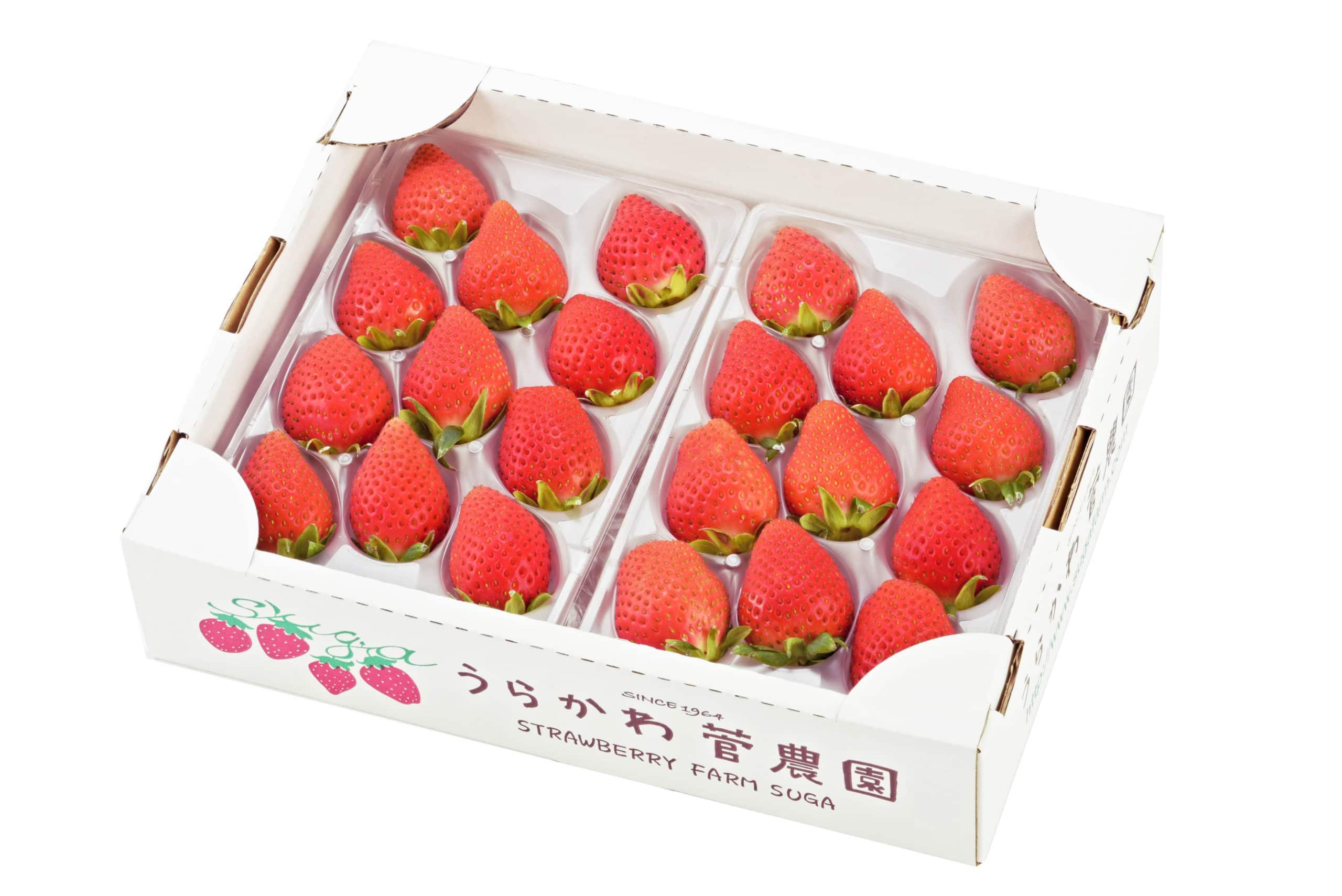 北海道苺3