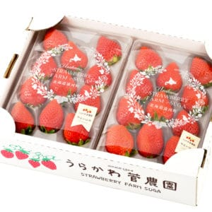 北海道苺2